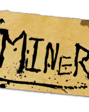 Miner was an assignment to make a game that is fun for a minimal of 1 minute and easy to learn. We choose for a race/adventure type of gameplay where the player must escape a collapsing mine. Next to this the game must be played with a Wiimote and Nunchuk to enhance the experience of the game. Can you survive this game?